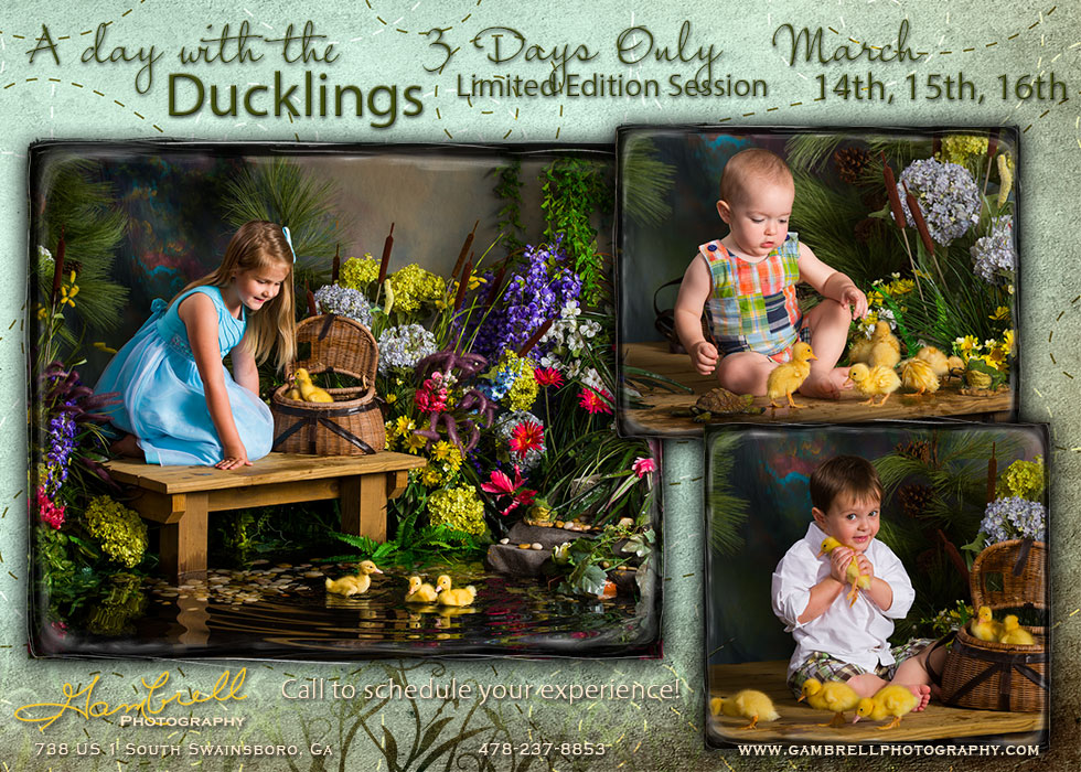 A Day with the Ducklings Special Edition Session  3 Days Only! March 14th, 15th, 16th  Call 478-237-8853 to schedule your expericence!
